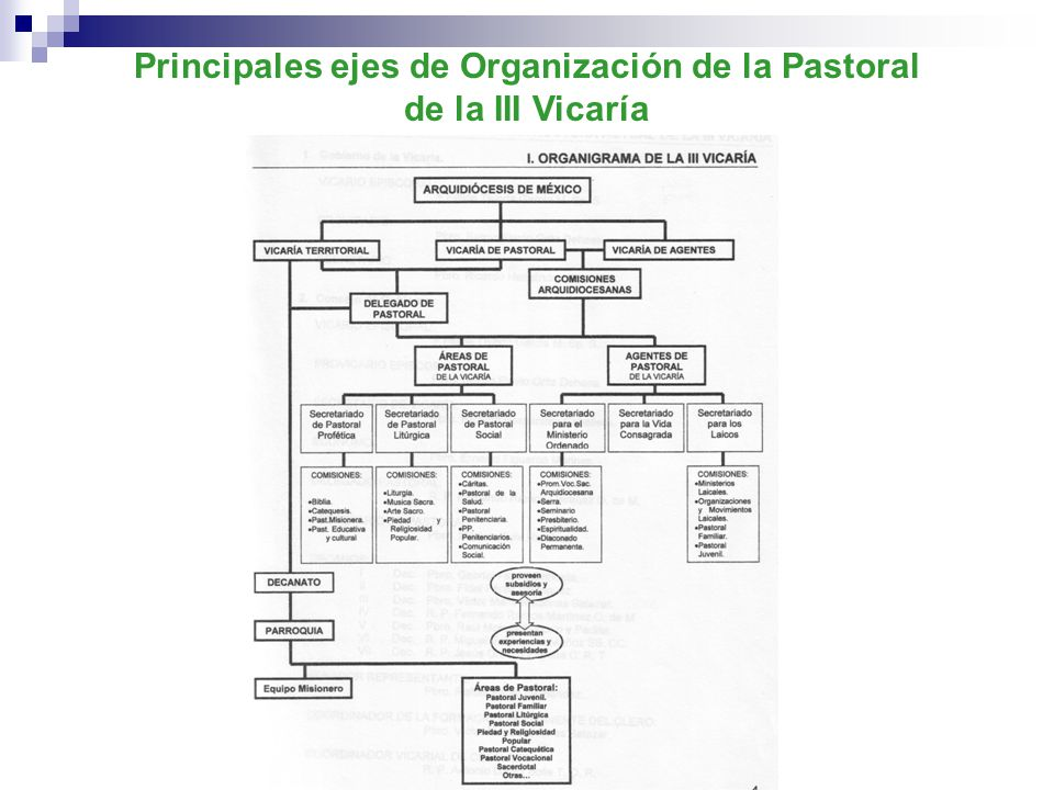 Principales ejes de Organización de la Pastoral