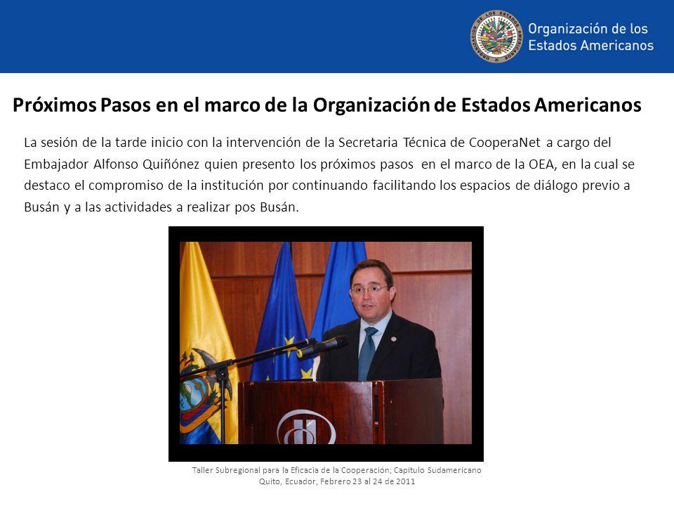 Próximos Pasos en el marco de la Organización de Estados Americanos