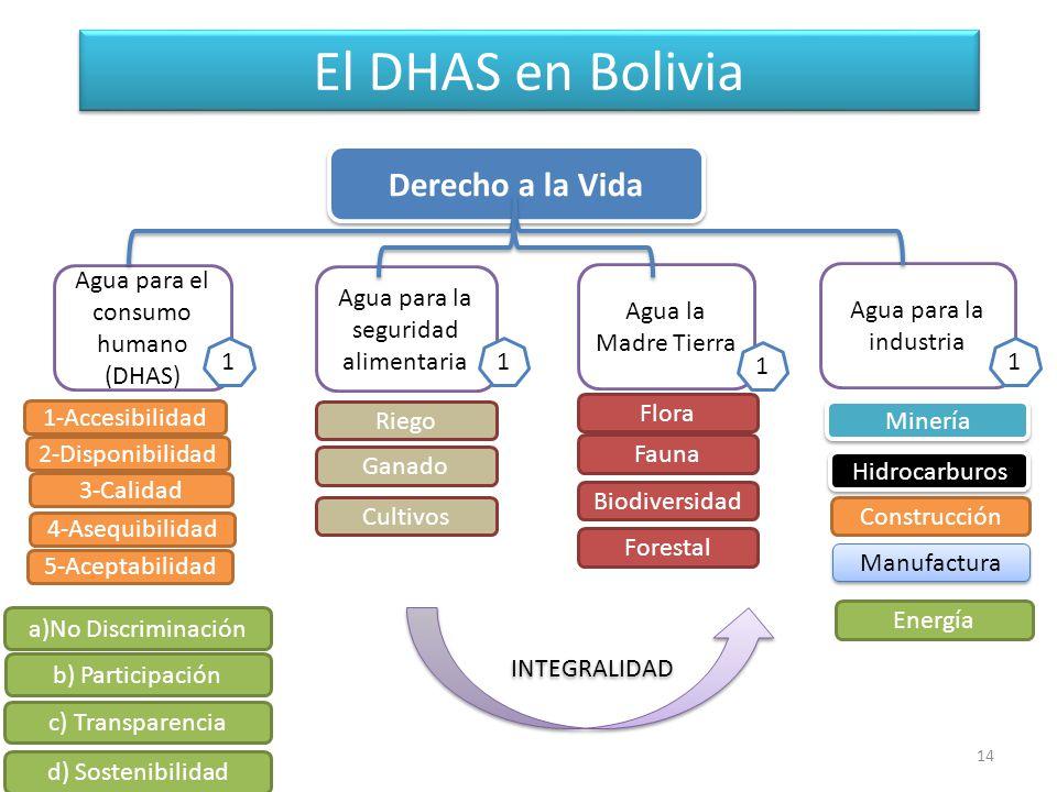 El DHAS en Bolivia Derecho a la Vida