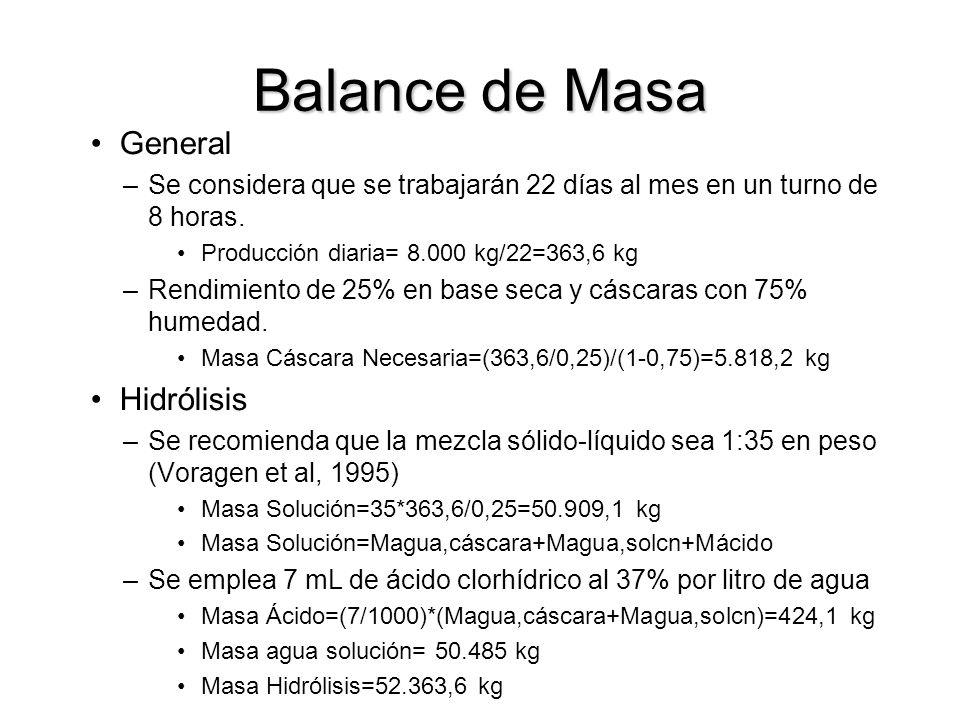 Balance de Masa General Hidrólisis