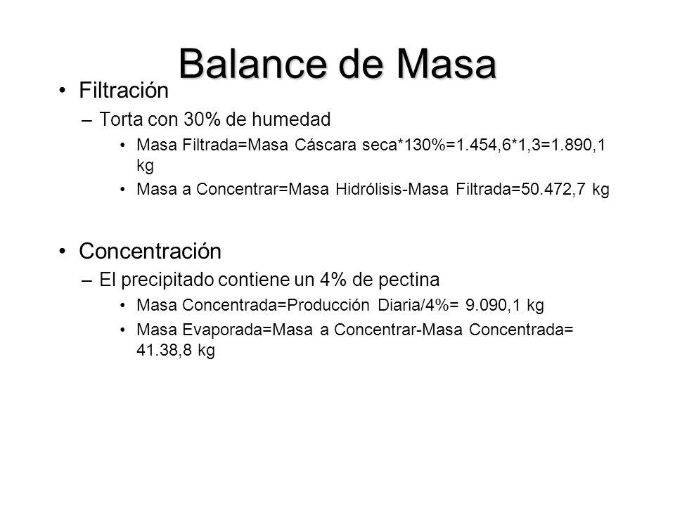 Balance de Masa Filtración Concentración Torta con 30% de humedad