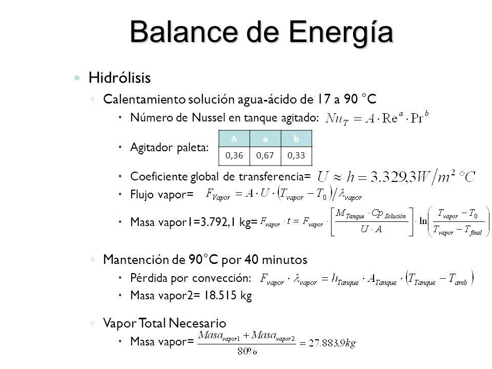 Balance de Energía Hidrólisis