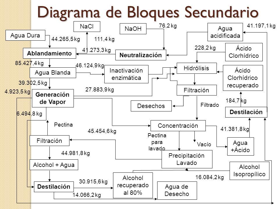 Diagrama de Bloques Secundario