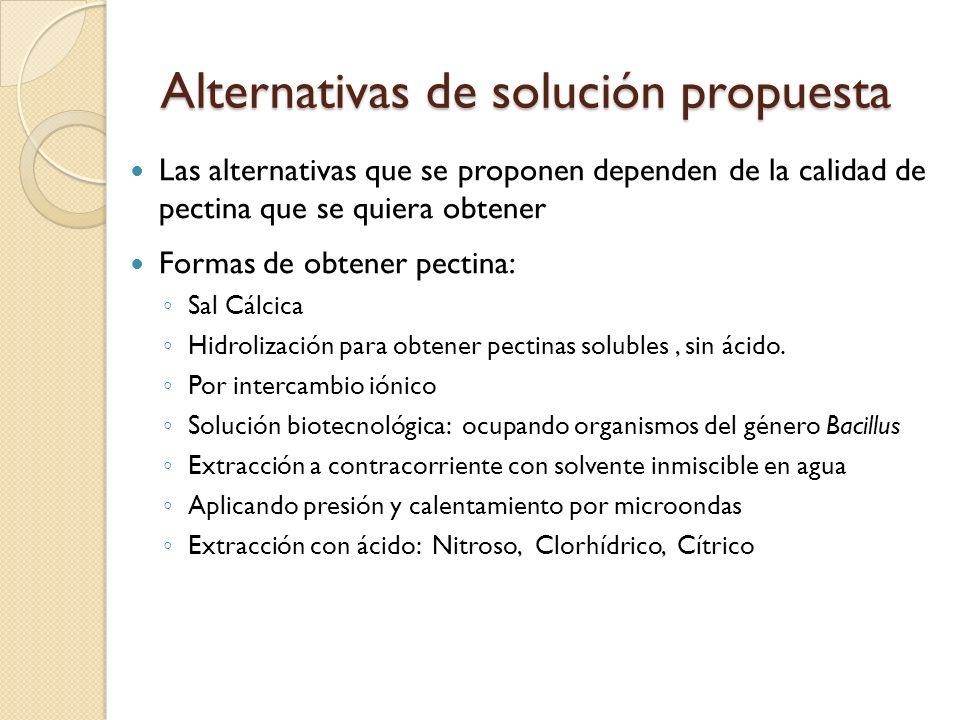 Alternativas de solución propuesta
