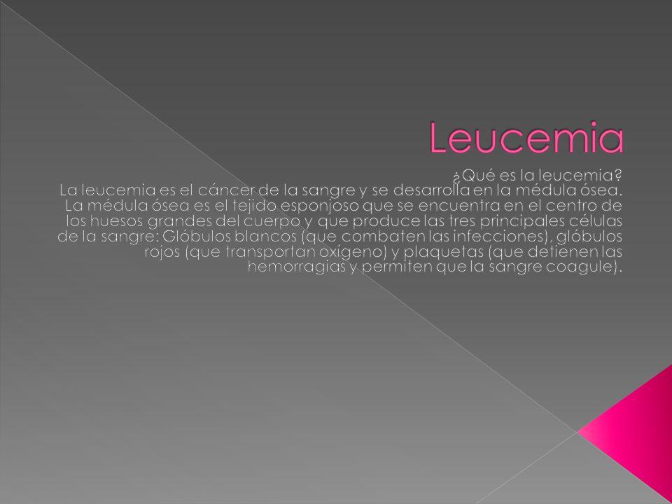 Leucemia ¿Qué es la leucemia