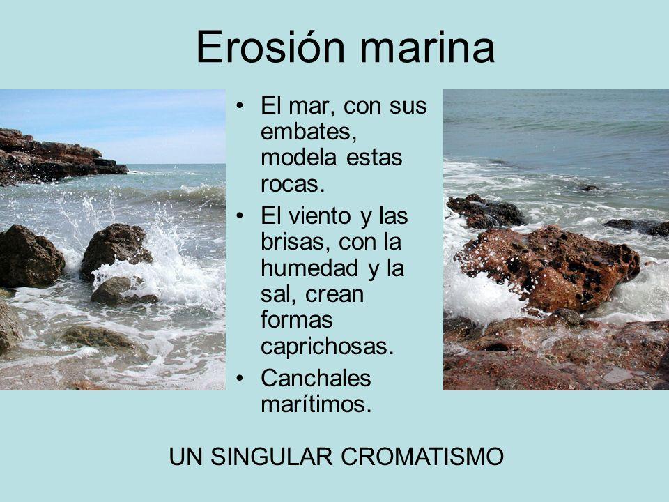 Erosión marina El mar, con sus embates, modela estas rocas.