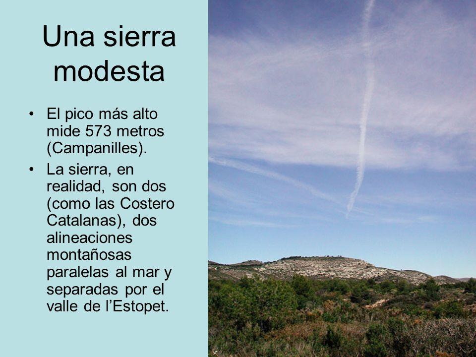 Una sierra modesta El pico más alto mide 573 metros (Campanilles).