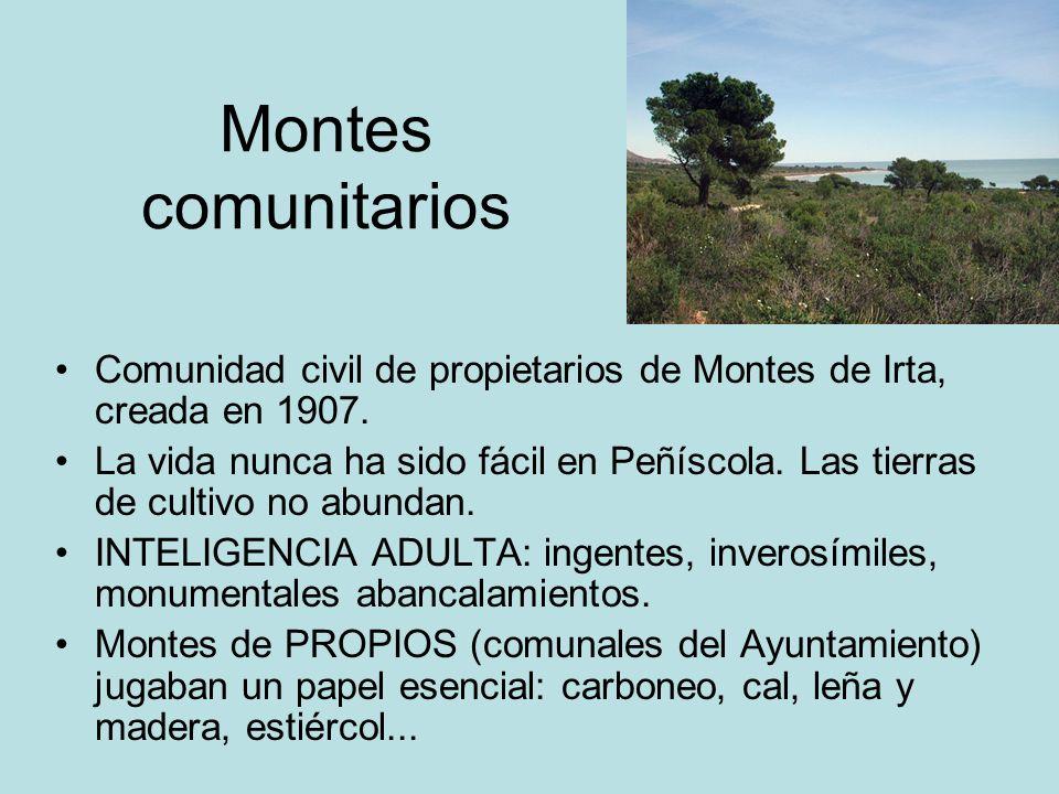 Montes comunitarios Comunidad civil de propietarios de Montes de Irta, creada en 1907.