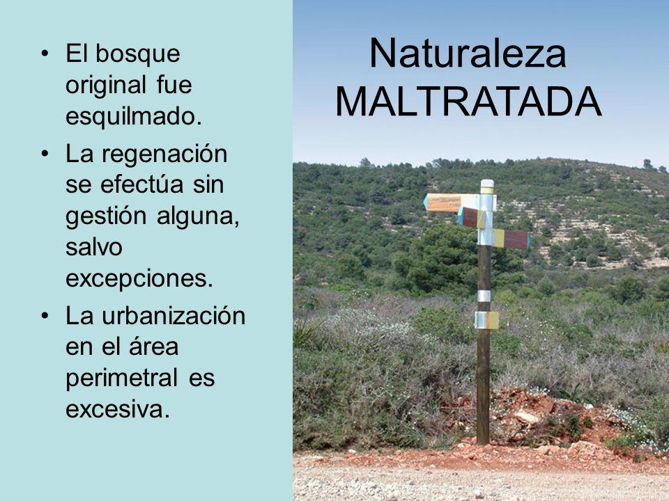Naturaleza MALTRATADA