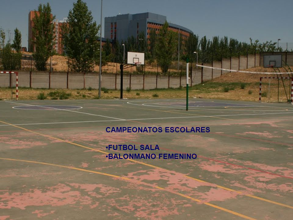 CAMPEONATOS ESCOLARES
