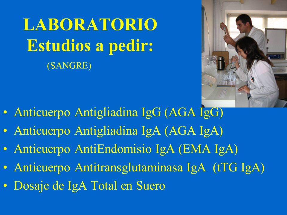 LABORATORIO Estudios a pedir: