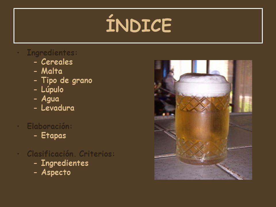 ÍNDICE Ingredientes: - Cereales - Malta - Tipo de grano - Lúpulo