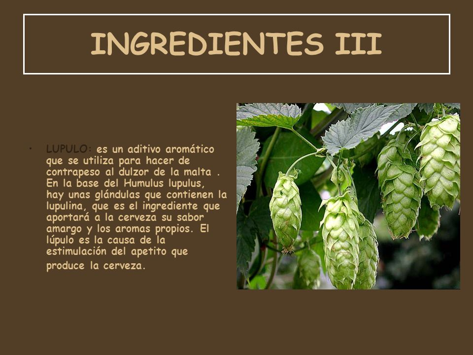 INGREDIENTES III