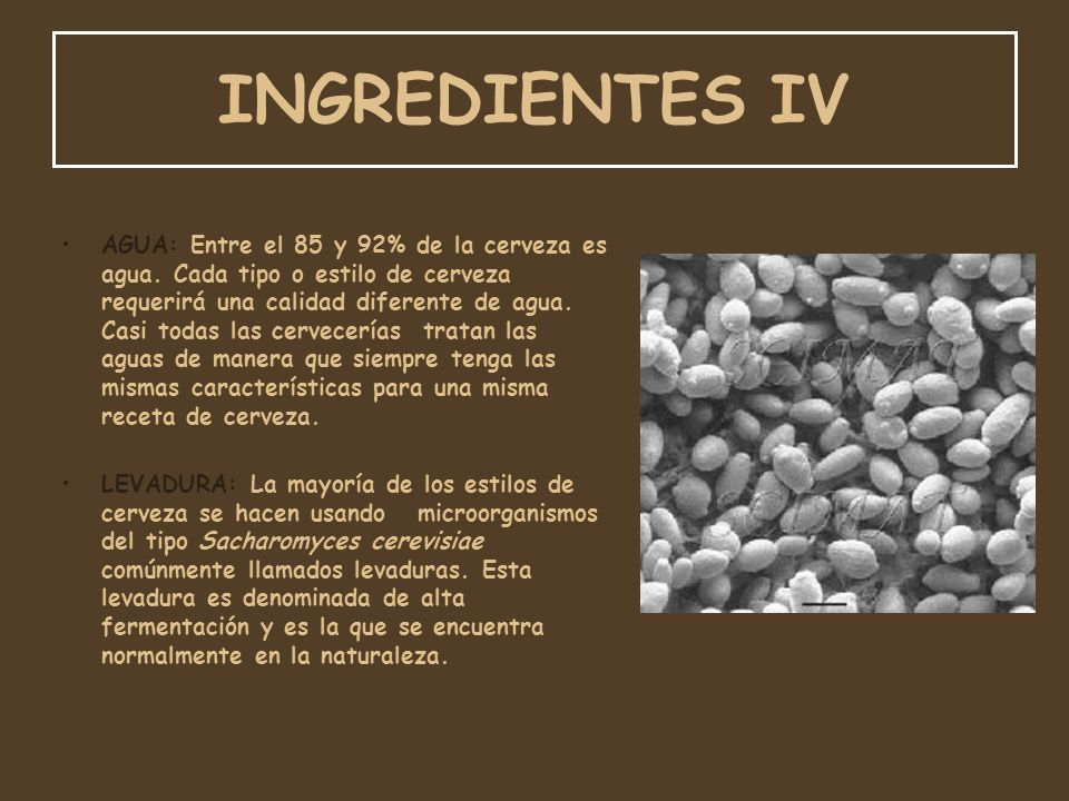 INGREDIENTES IV