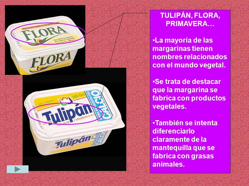 TULIPÁN, FLORA, PRIMAVERA…