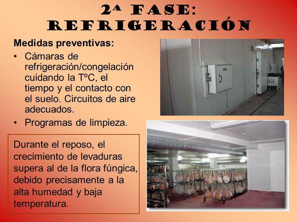 2ª Fase: Refrigeración Medidas preventivas: