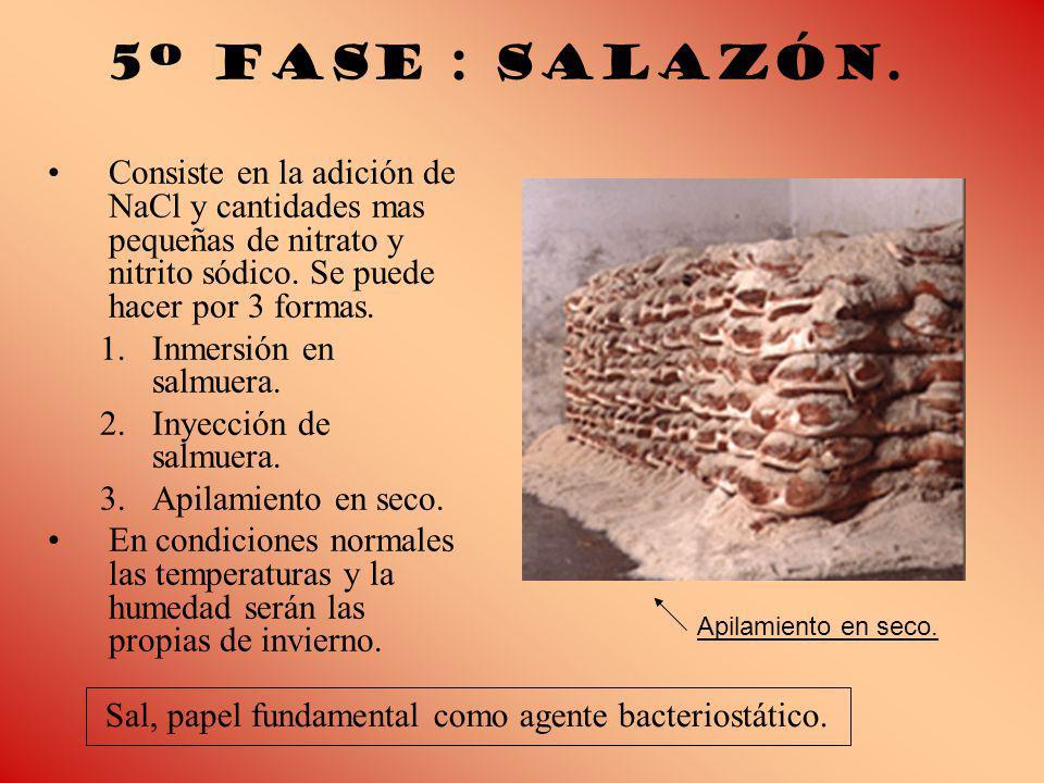 5º Fase : Salazón. Consiste en la adición de NaCl y cantidades mas pequeñas de nitrato y nitrito sódico. Se puede hacer por 3 formas.