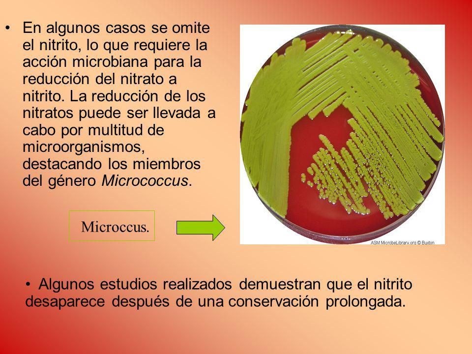 En algunos casos se omite el nitrito, lo que requiere la acción microbiana para la reducción del nitrato a nitrito. La reducción de los nitratos puede ser llevada a cabo por multitud de microorganismos, destacando los miembros del género Micrococcus.