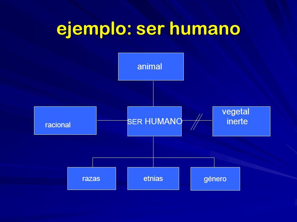 ejemplo: ser humano animal vegetal inerte racional SER HUMANO razas