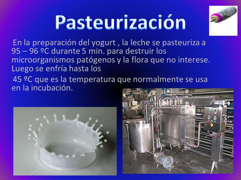 Pasteurización
