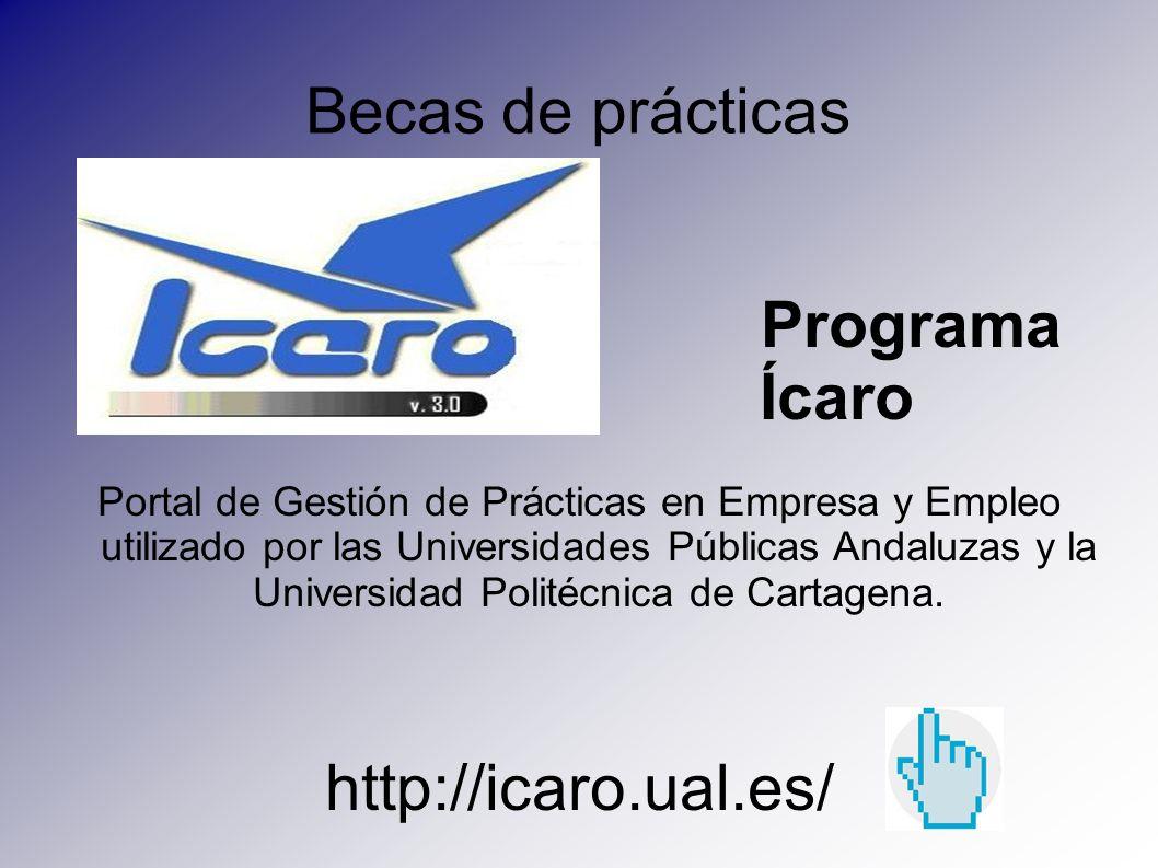 Becas de prácticas Programa Ícaro http://icaro.ual.es/