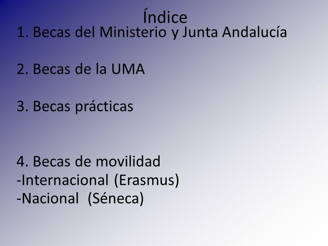 Índice 1. Becas del Ministerio y Junta Andalucía 2. Becas de la UMA