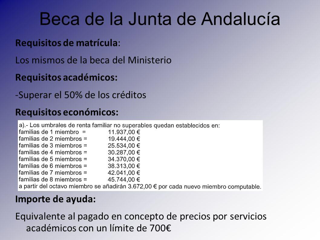 Beca de la Junta de Andalucía