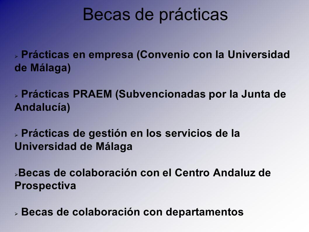 Becas de prácticas Prácticas en empresa (Convenio con la Universidad de Málaga) Prácticas PRAEM (Subvencionadas por la Junta de Andalucía)