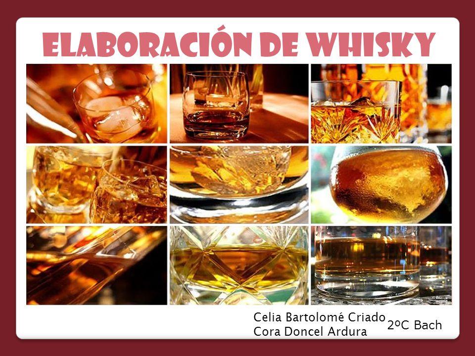 ELABORACIÓN de whisky Celia Bartolomé Criado Cora Doncel Ardura