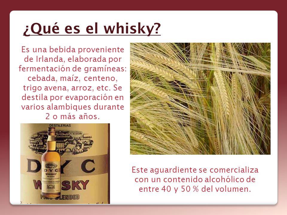 ¿Qué es el whisky