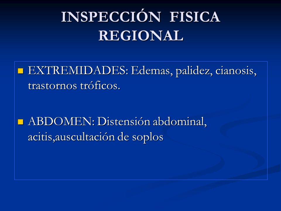 INSPECCIÓN FISICA REGIONAL