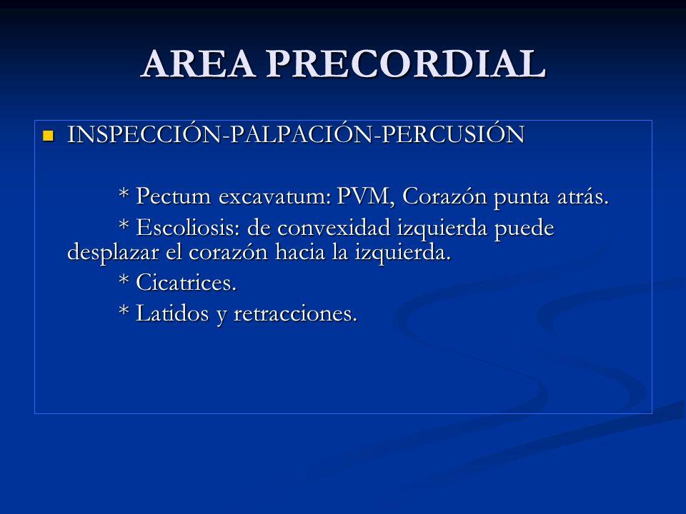 AREA PRECORDIAL INSPECCIÓN-PALPACIÓN-PERCUSIÓN