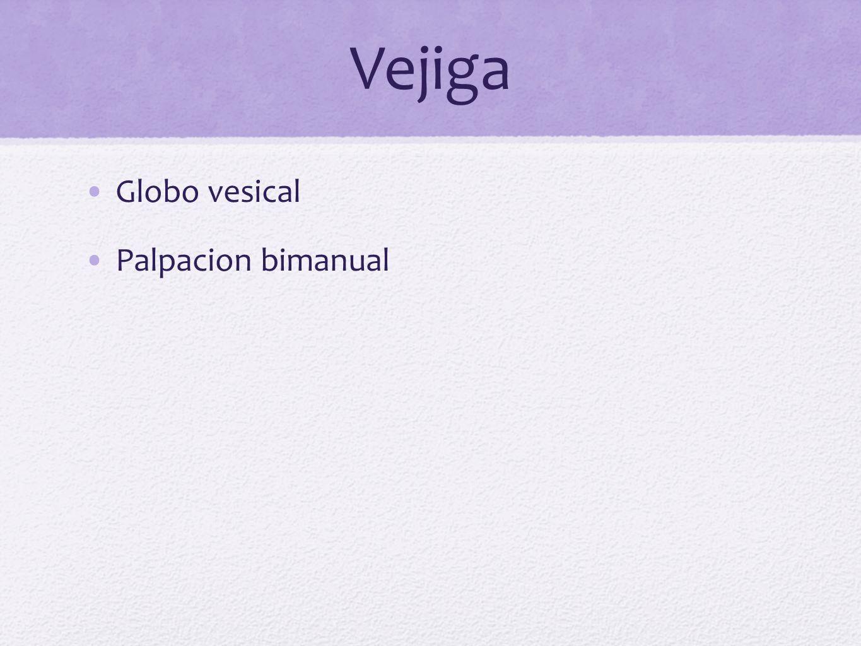 Vejiga Globo vesical Palpacion bimanual