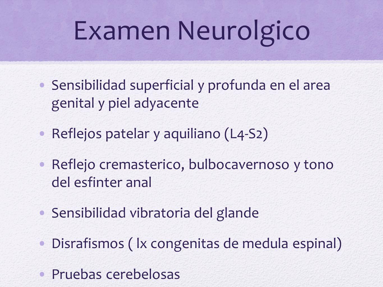 Examen Neurolgico Sensibilidad superficial y profunda en el area genital y piel adyacente. Reflejos patelar y aquiliano (L4-S2)