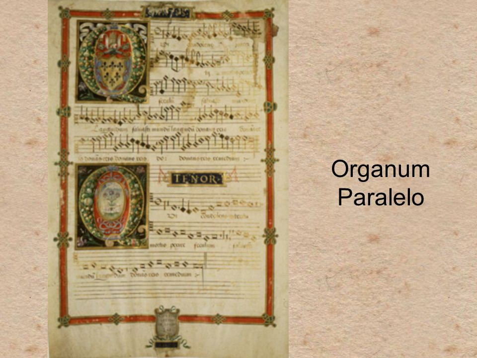 Organum Paralelo