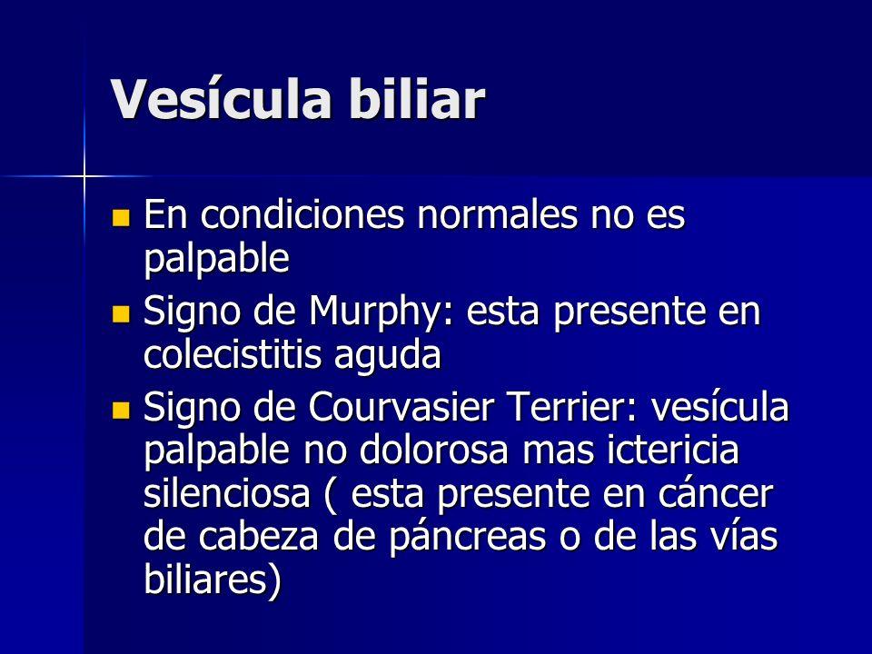 Vesícula biliar En condiciones normales no es palpable
