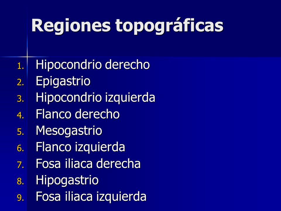 Regiones topográficas