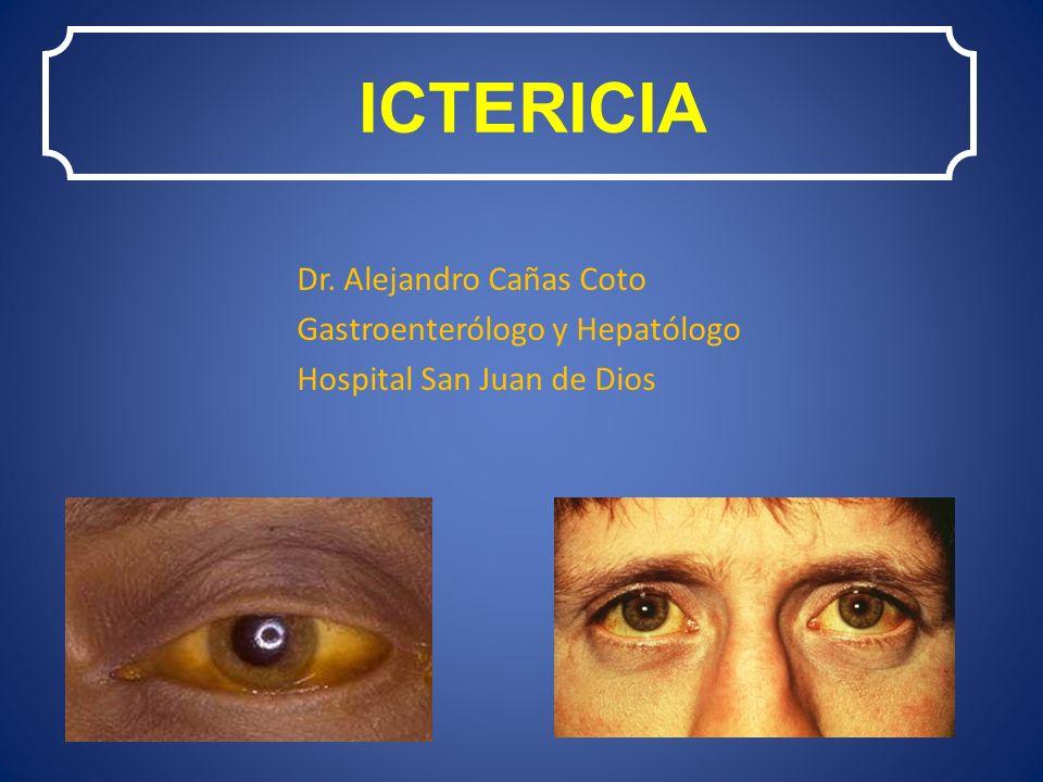 ICTERICIA Dr. Alejandro Cañas Coto Gastroenterólogo y Hepatólogo