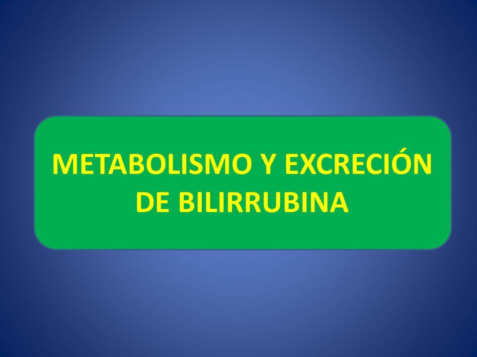 METABOLISMO Y EXCRECIÓN DE BILIRRUBINA