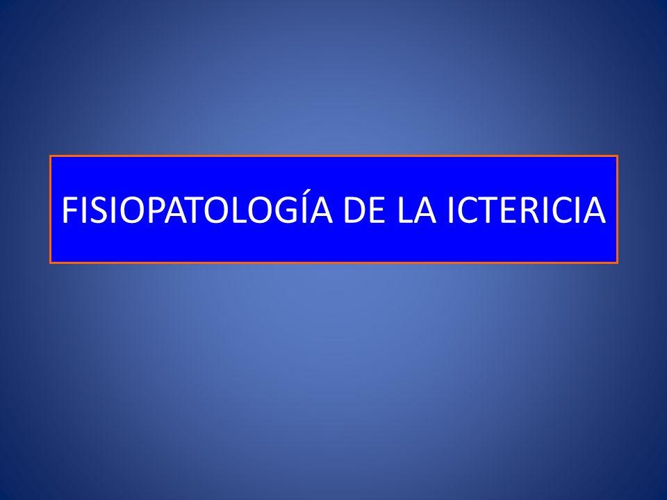 FISIOPATOLOGÍA DE LA ICTERICIA
