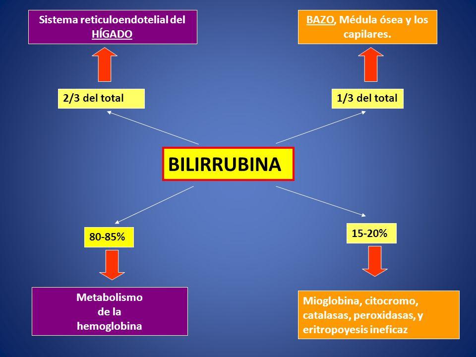 BILIRRUBINA Sistema reticuloendotelial del HÍGADO