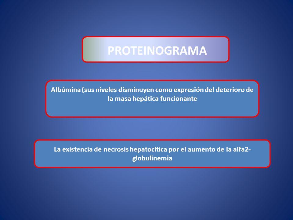 PROTEINOGRAMA Albúmina (sus niveles disminuyen como expresión del deterioro de la masa hepática funcionante.