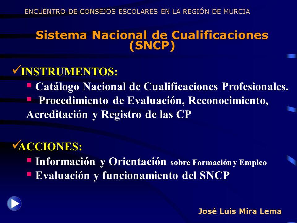 Sistema Nacional de Cualificaciones (SNCP)