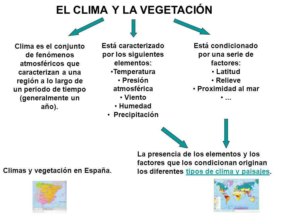 EL CLIMA Y LA VEGETACIÓN