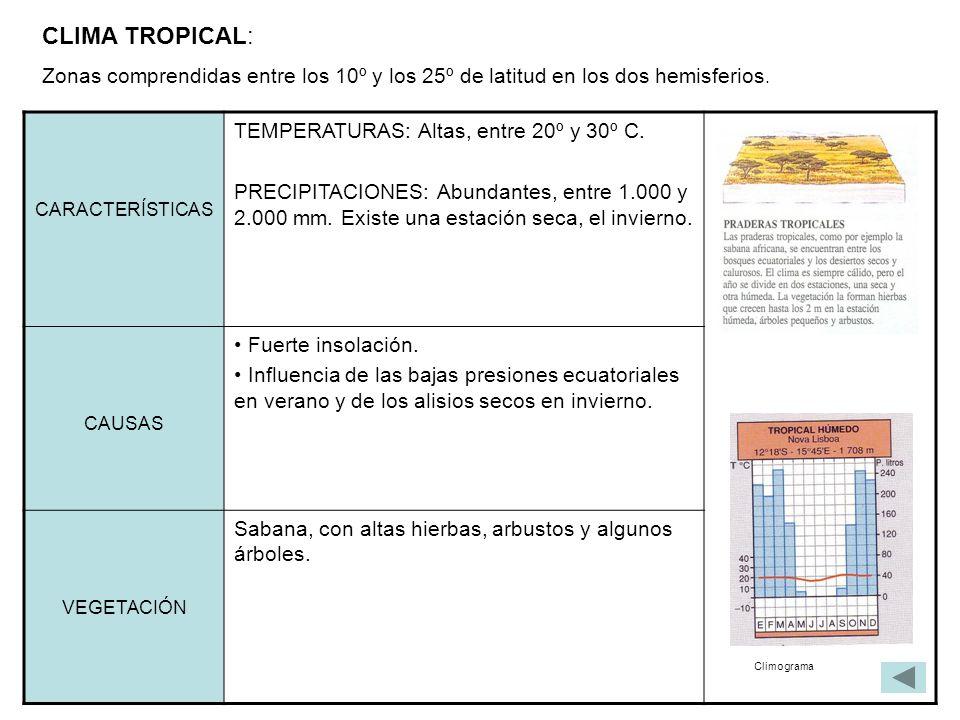 CLIMA TROPICAL: Zonas comprendidas entre los 10º y los 25º de latitud en los dos hemisferios. CARACTERÍSTICAS.