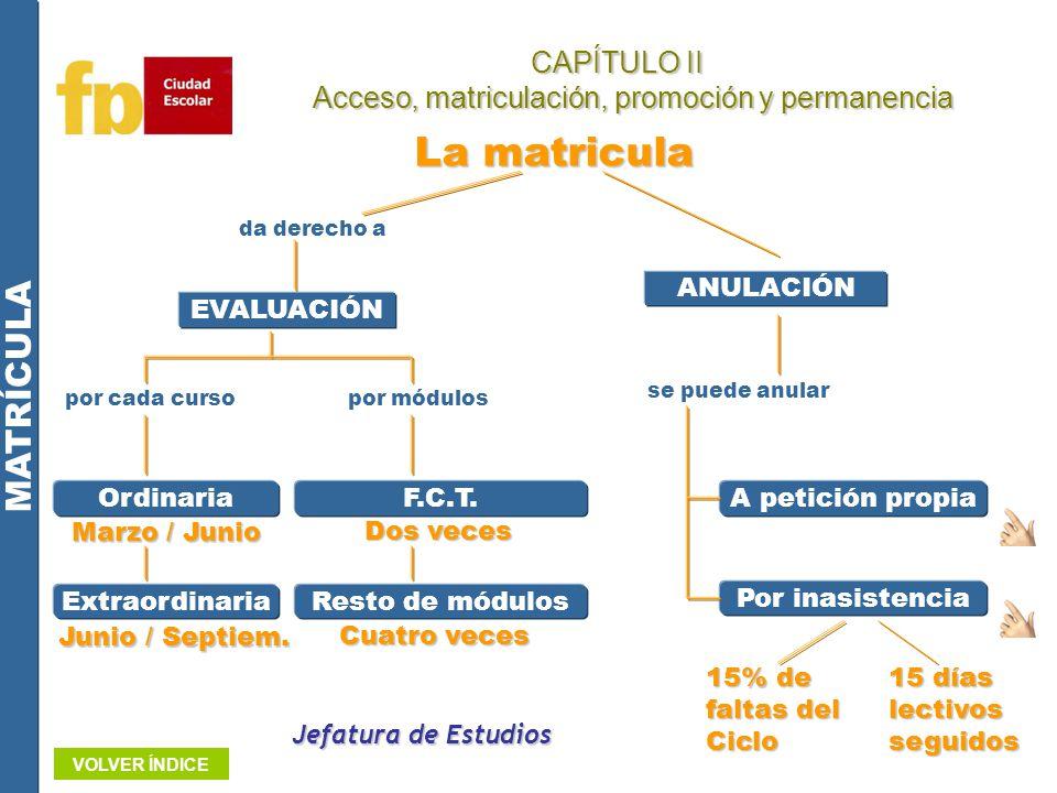 Acceso, matriculación, promoción y permanencia
