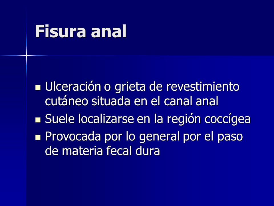 Fisura anal Ulceración o grieta de revestimiento cutáneo situada en el canal anal. Suele localizarse en la región coccígea.