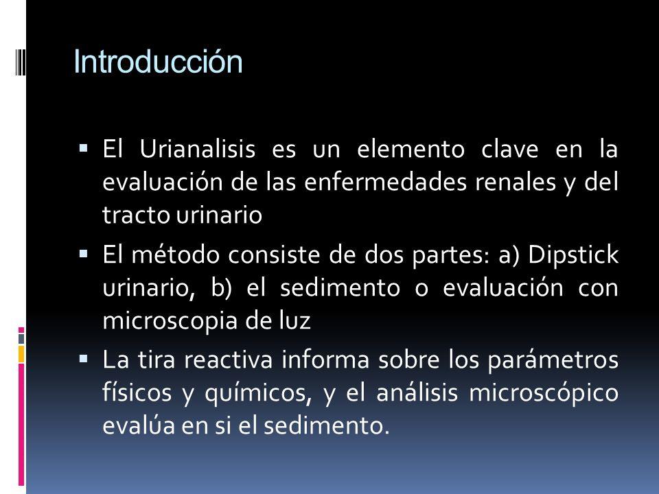 Introducción El Urianalisis es un elemento clave en la evaluación de las enfermedades renales y del tracto urinario.