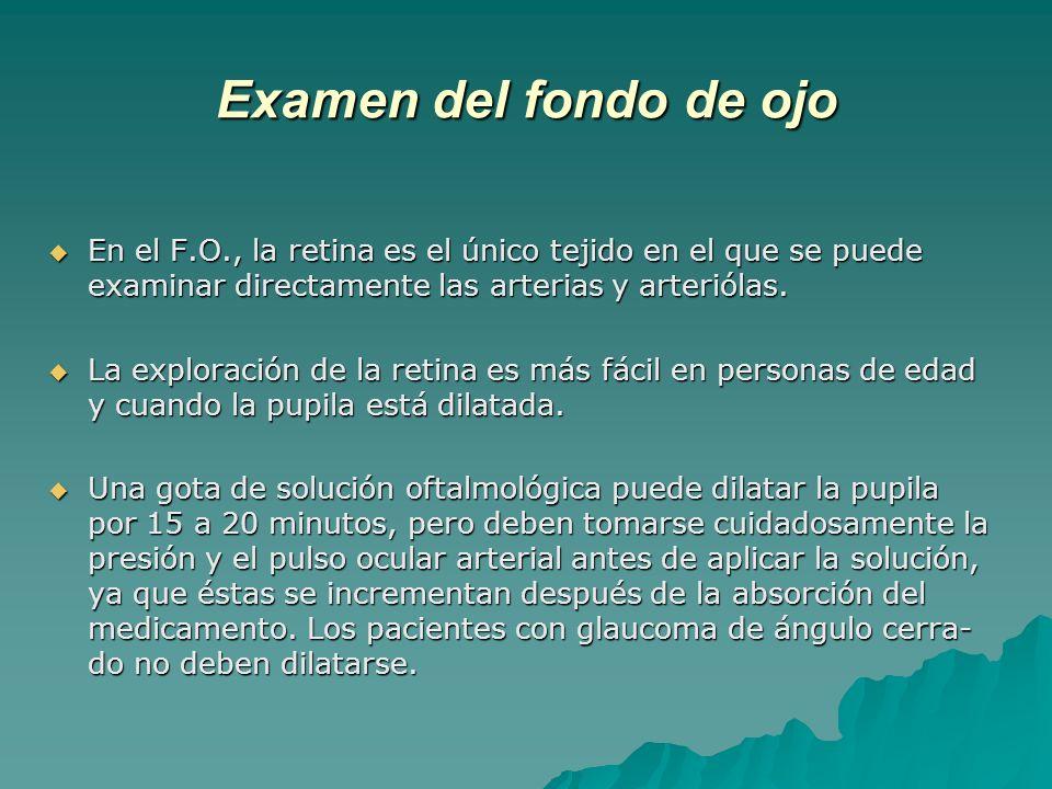 Examen del fondo de ojo En el F.O., la retina es el único tejido en el que se puede examinar directamente las arterias y arteriólas.