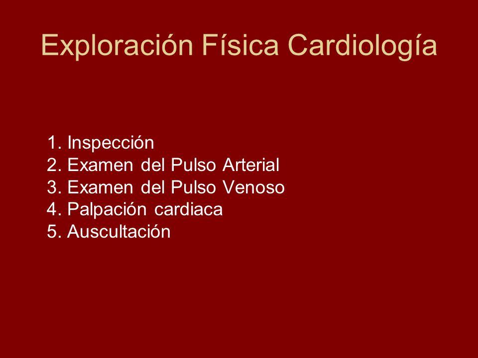 Exploración Física Cardiología